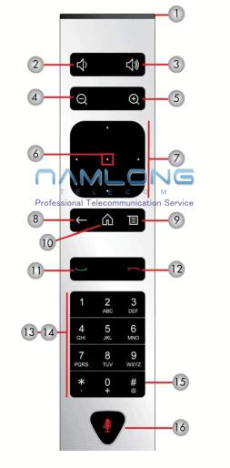 Remote Polycom Group